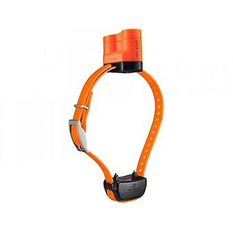Garmin Collar Delta Upland XC (Dogs , Training Aids , Anti-Barking, Anti-Pulling & More)