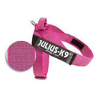 Julius K9 sele färg & grå IDC rosa storlek 3