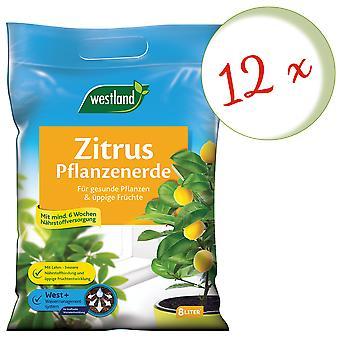 Sparset: 12 x WESTLAND® Zitruspflanzen Erde, 8 Liter