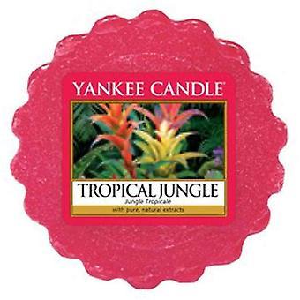 Yankee candle tropical jungle wax tart