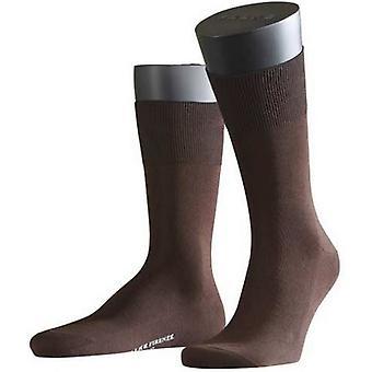 Falke Firenze Socks - Brown