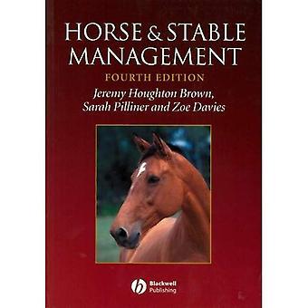 Cavalo e gestão estável