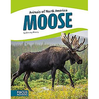 Animals of North America - Moose by  -Christy Mihaly - 9781635170917 B
