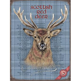 Medium Wall Plaque 200mm x 150mm - Stag by The Original Metal Sign Co