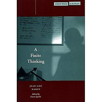 A Finite Thinking (Cultural Memory in the Present)