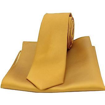 David van Hagen matching Satiini silkki ohut tie ja tasku neliö setti-kulta