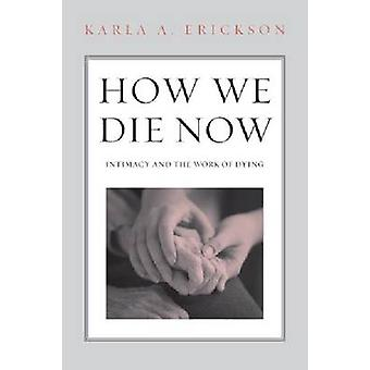How We Die Now Intimacy and the Work of Dying von Karla A Erickson
