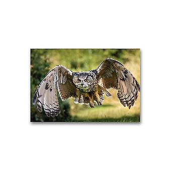 A Beautiful, Eagle Owl Flying Poster -Image by Shutterstock