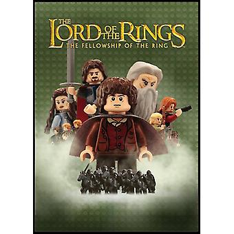 Lord of the Rings-Fellowship of the Ring [DVD] USA import