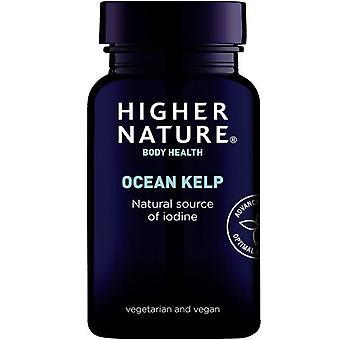 Tabletas vegetarianas Kelp del océano de la naturaleza más alta 180 (KEL180)