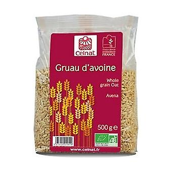 Oat Grains 500 g