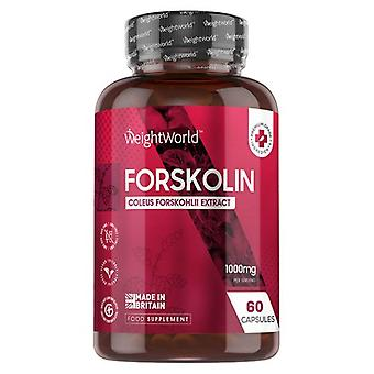 Pure Forskolin Capsules x 60 - 500mg Extract Slimming Pills