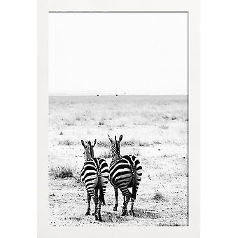 JUNIQE Print - Double Stripes - Safari affiche en noir & blanc