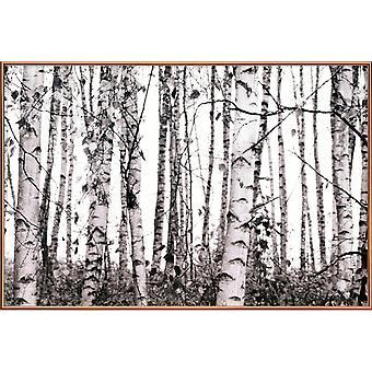 JUNIQE Print - Winter Birches - Trees Poster in Grey & Black