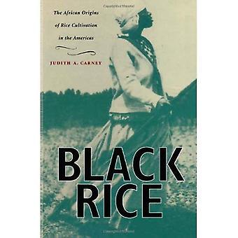 Svart ris: Afrikanska ursprunget till risodling i Amerika