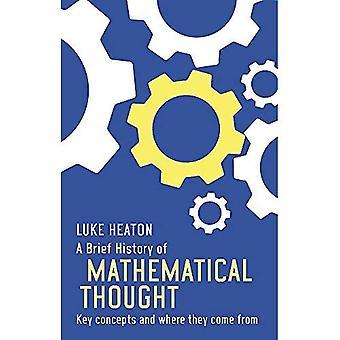 Een korte geschiedenis van wiskundige denken: belangrijke concepten en waar ze vandaan komen (korte Historiën)