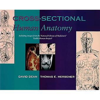 Cross Sectional Human Anatomy by David Dean - Thomas E. Herbener - 97