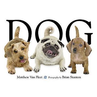 犬マシュー ヴァン ・ フリート - ブライアン スタントン - で 9781416941378 本