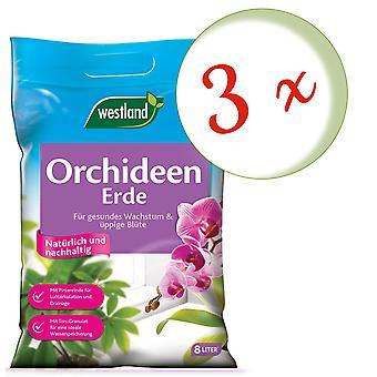 Sparset: 3 x WESTLAND® orkideamaa, 8 litraa