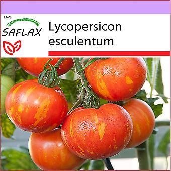 Saflax - 10 semillas - tomate - Tigerella - Tigerella Tomate - Pomodoro Tigerella - Tomate - Tigerella Tigerella - Tomate-