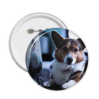 תג סיכות עגולות של כלב קורגי