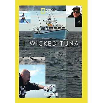 Wicked tonijn seizoen 6 [DVD] USA import