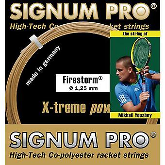 Signum Pro Firestorm ensemble unique 12m