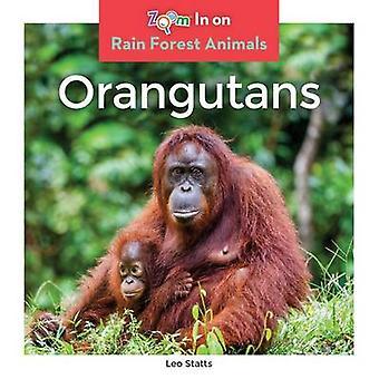 Orangutans by Leo Statts - 9781680791952 Book
