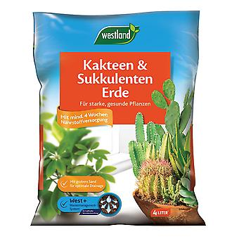 WESTLAND® cacti and succulents earth, 4 litres