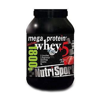Mega Protein (Strawberry Flavor) 1,8 kg