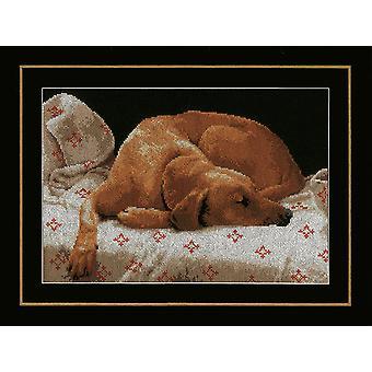 Lanarte räknade Cross Stitch Kit: Sovande hund (Aida)