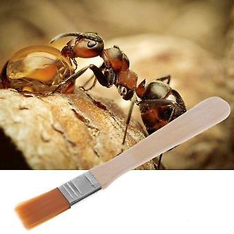 أداة تنظيف عش وعاء الحشرات