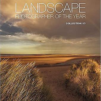 Fotógrafo de paisagem do ano