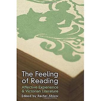 Das Gefühl des Lesens: affektive Erfahrung und viktorianischen Literatur