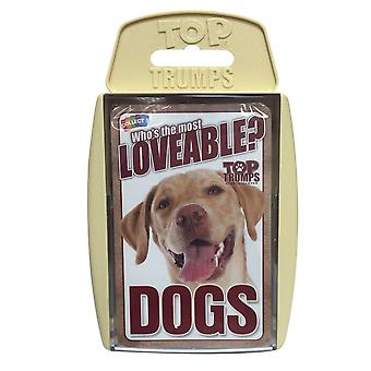 Top Trumps Wer's The Most Loveable? Hunde