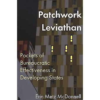 Patchwork Leviathan by Erin Metz McDonnell