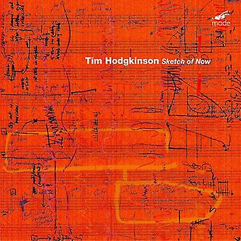 Tim Hodgkinson - Tim Hodgkinson: Sketch of Now [CD] USA import