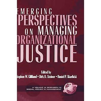 Organizational Justice Beyond the Organization-tekijä Dirk Steiner - 9781