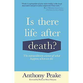 Is There Life After Death by Anthony Peake