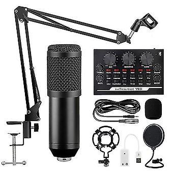 Professionelles Mikrofon xlr verdrahtete Handheld-Mikrofon-Gesang Aufnahme Studio Kondensatormikrofon für