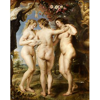 The Three Graces, Peter Paul Rubens, 50x40cm