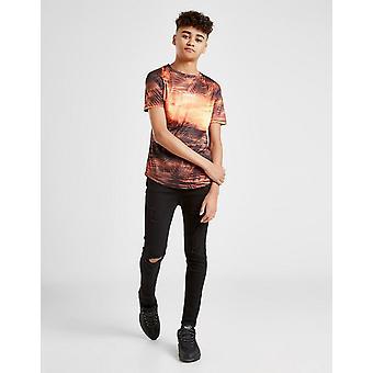 Novo Sonneti Boys' Setter Short Sleeve T-Shirt Orange
