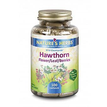 Zand Hawthorn - Flower-Leaf-Berries, 100 Caps