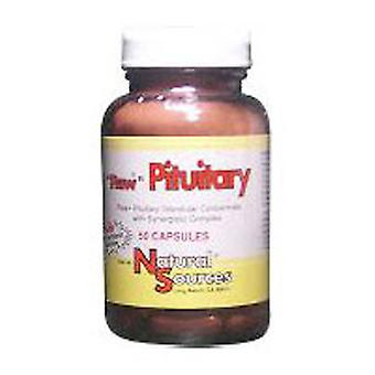 Natural Sources Raw Pituitary, 50 Tabs