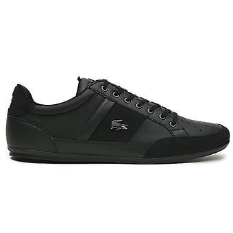 Lacoste Chaymon 741CMA006402H universal all year men shoes
