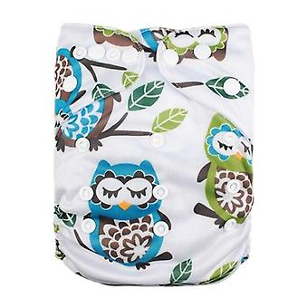 Eco-friendly Modern Cloth Nappy With 1pc Microfiber Insert
