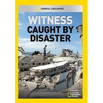 Zeuge: Gefangen von Katastrophe [DVD] USA import