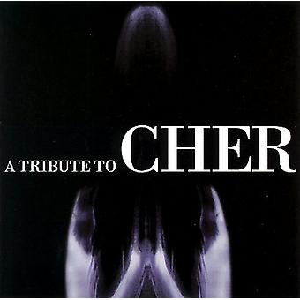 Tribute to Cher - Tribute to Cher [CD] USA import