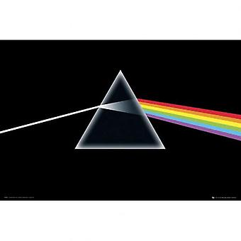 Pink Floyd juliste 236