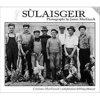 Sulaisgeir: Zdjęcia przez James MacGeoch
